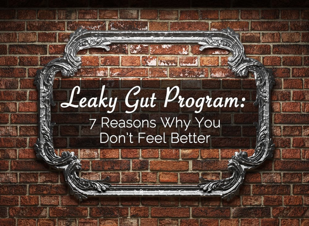 leaky gut program