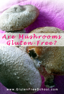 mushroomsglutenfree