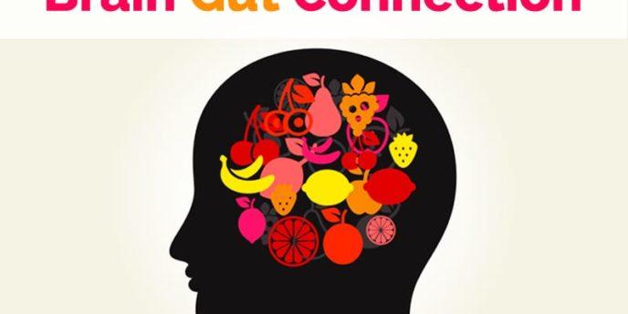 brain gut connection